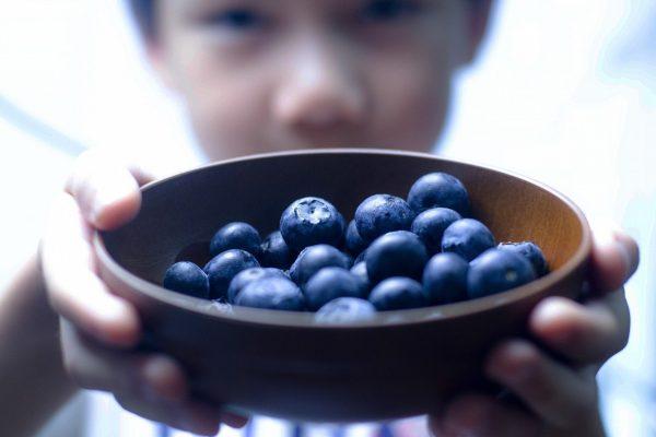 blueberry-3463062